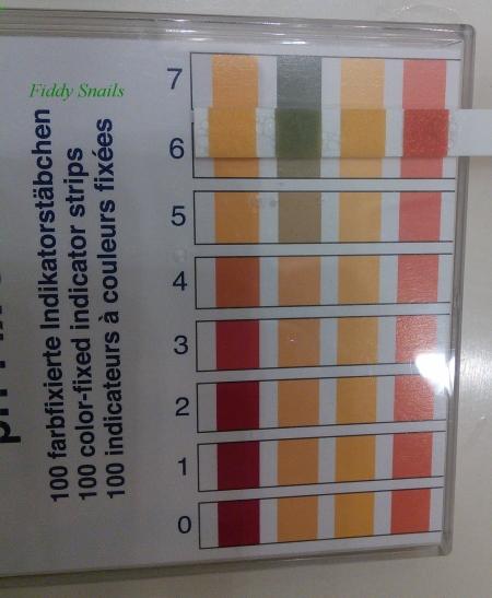 Cosrx low pH cleanser foam pH test