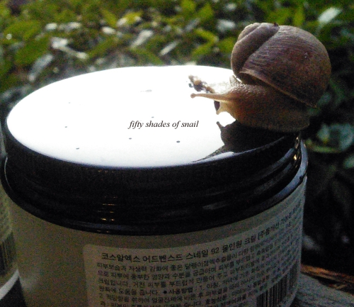 Jar of Cosrx snail cream