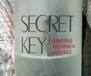 Secret Key Starting Treatment Essence close up
