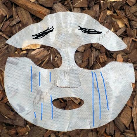 Sulwhasoo Innerise Complete Mask sad face