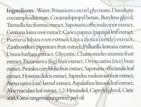Treeannsea Liquide Mousse Foam cleanser English ingredients