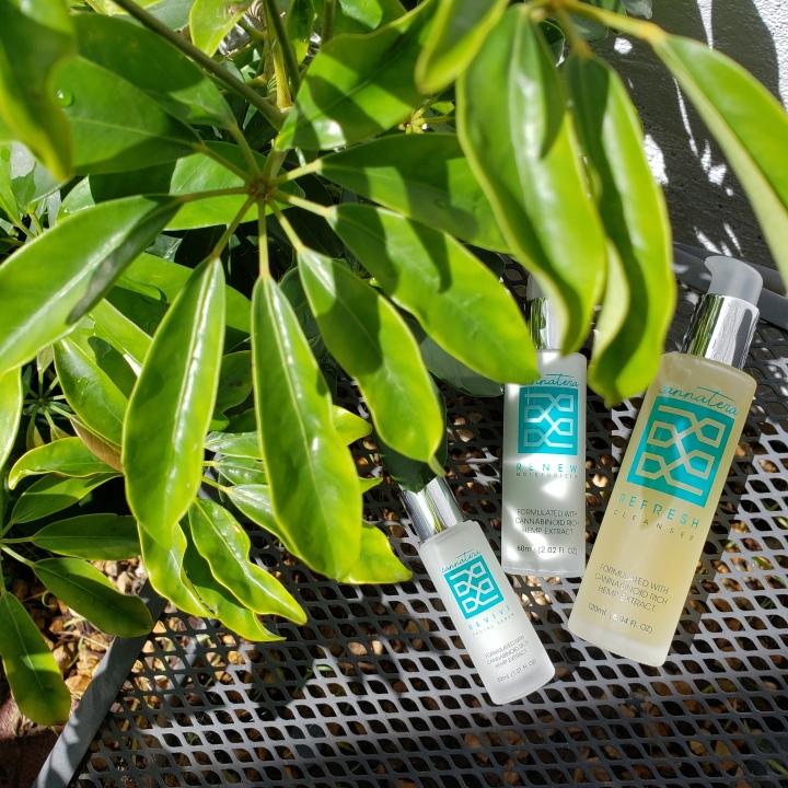 Cannatera anti-aging CBD oil skincare line
