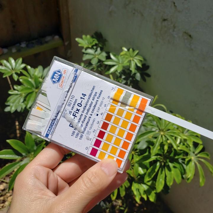 Cannatera Refresh Cleanser pH